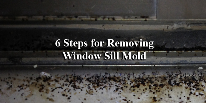 Removing Mold From The Window Sill Renewal By Andersen